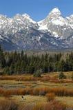 Montanha de Teton com caminhada do homem Fotografia de Stock