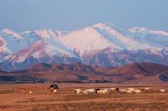 Montanha de Tianshan no nascer do sol Imagens de Stock Royalty Free