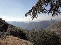 Montanha de Troodos Fotografia de Stock