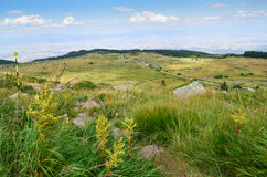 Montanha de Vitosha Imagens de Stock