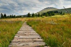 Montanha de Vitosha Fotografia de Stock Royalty Free