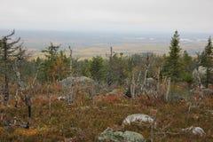 Montanha de Vottovaara Fotos de Stock Royalty Free