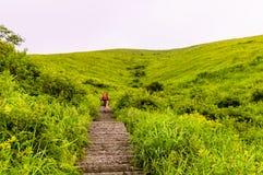 Montanha de Wugongshan Foto de Stock