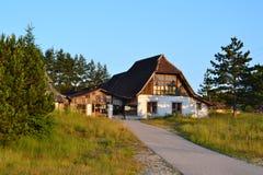 Montanha de Zlatibor Fotos de Stock Royalty Free