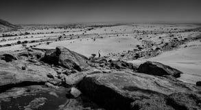 Montanha & deserto Fotografia de Stock