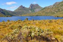 Montanha do berço e lago dove - Tasmânia fotos de stock
