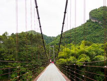 Montanha do coração da ponte de corda em Surat Thani, Tailândia Fotografia de Stock