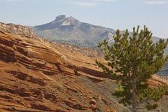 Montanha do coração no vermelho Imagem de Stock Royalty Free