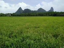 montanha do fundo em Tailândia Fotos de Stock Royalty Free