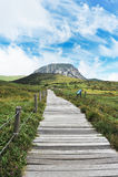 Montanha do halla de Jeju han Fotografia de Stock