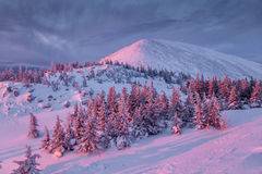 Montanha do inverno no nascer do sol Fotografia de Stock Royalty Free