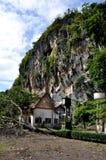 Montanha do macaco Imagens de Stock