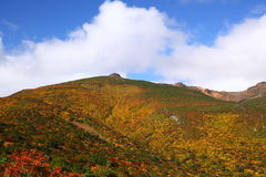 Montanha do outono Foto de Stock Royalty Free