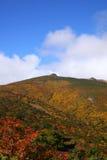 Montanha do outono Fotografia de Stock