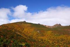 Montanha do outono Fotos de Stock Royalty Free