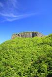 Montanha do penhasco com verdure fresco Imagens de Stock Royalty Free