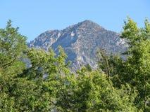 Montanha do verão Fotografia de Stock Royalty Free
