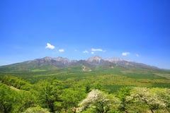 Montanha do verde fresco Fotografia de Stock