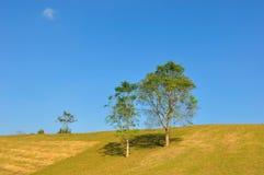 Montanha dourada Imagem de Stock Royalty Free