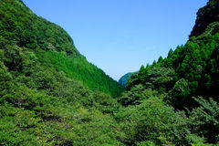 Montanha e árvore Imagem de Stock Royalty Free