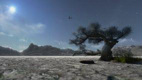 Montanha e árvore solitário, nevando, nuvens do timelapse ilustração stock