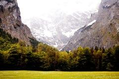 Montanha e árvores Imagens de Stock Royalty Free