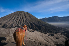 Montanha e areia da casa Fotografia de Stock Royalty Free