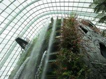Floresta original da nuvem Foto de Stock Royalty Free