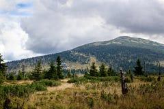 Montanha e campo Foto de Stock