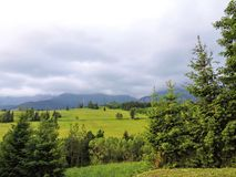 Montanha e campos bonitos com as plantas em Eslováquia Foto de Stock