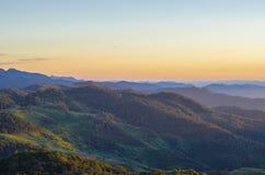 Montanha e floresta Imagem de Stock