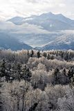 Montanha e floresta congeladas Fotos de Stock Royalty Free