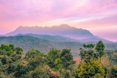 Montanha e floresta da natureza da paisagem no nascer do sol Fotos de Stock