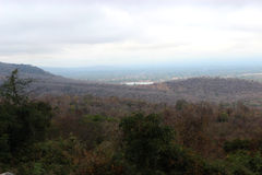 Montanha e floresta em um dia nebuloso Imagens de Stock Royalty Free