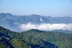 Montanha e névoa imagens de stock