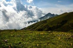 Montanha e torrões Imagem de Stock