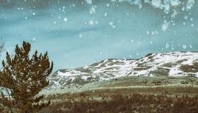 Montanha em Bósnia e em Herzegovina fotos de stock