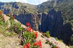 Montanha em Etiópia. Fotografia de Stock Royalty Free