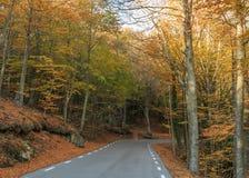 A montanha está tomando a cor durante o outono Fotos de Stock