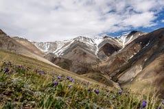 A montanha floresce nuvens do pico da neve Imagem de Stock Royalty Free