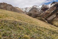 A montanha floresce nuvens do pico da neve Foto de Stock Royalty Free