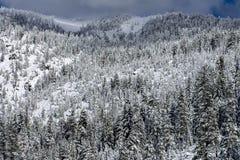 Montanha fria fotografia de stock