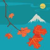 Montanha Fuji Autumn Night Fotos de Stock