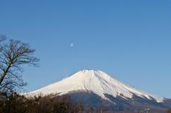 montanha fuji Imagens de Stock