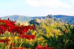 Montanha Loei Tailândia de Suan Hin Pha Ngam Foto de Stock