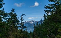 Montanha longe através da floresta com céu azul e paisagem do verão das nuvens do branco Fotos de Stock Royalty Free