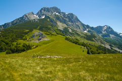 Montanha Maglic Foto de Stock Royalty Free