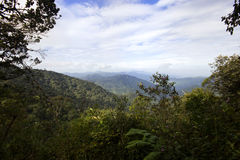 Montanha Malásia de Brinchang foto de stock