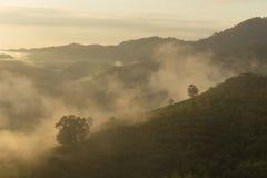 A montanha na manhã Fotografia de Stock Royalty Free