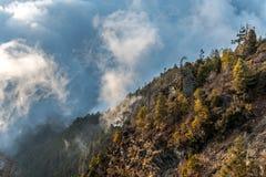 Montanha nebulosa Fotografia de Stock